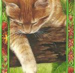 Peintre (Debby Faulkner-Stevens) / Chats sublimés par cadres fleuris...