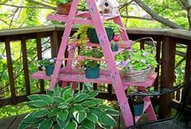 Ladders & planting ideas