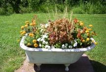 Bath tub gardens