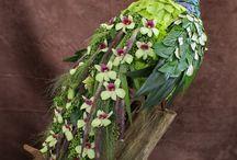 raíz decoradas