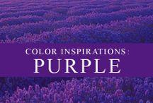 Color Inspiration: Purple