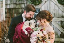 Pets of Honor