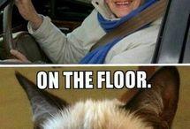the grumpy cat ^-^