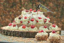 Vogel voer
