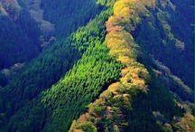 kure dağları