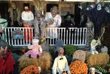 Fall Fun / Great ideas for a ghoulishly great and spookily splendid halloween!