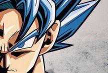 Goku®