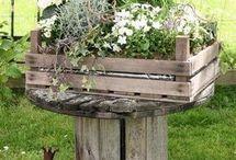 cagette jardin