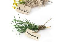 Herbs In the Home / Tips and ideas about using herbs for a healthy, natural home environment.