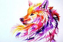 wolffoto