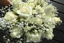 Ramos de Novia / Ramos de novia con flores naturales