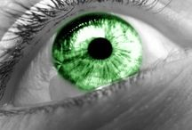 Green Green & More Green
