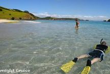 Discover Te Ika A Maui