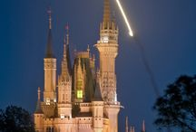 Walt Disney World / by Between Disney