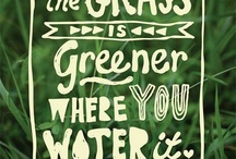 GO GREEN / by Tanya Ordaz