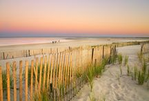 Perfect Cape Cod Moments / There is nothing better than a day on Cape Cod. This is a collection of moments that capture the essence of a perfect moment on Cape Cod.
