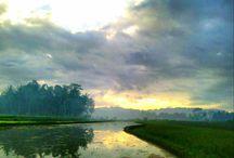 landscape picts