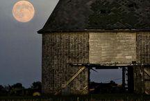 Farms / by Lori Tigges Bruflodt