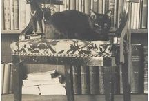 Коты, кошки и котята Cats / Кошки живут с нами не первый век, но тем не менее не каждый из нас знает кошек досконально, особенно их привычки, особенности и привычки. На этой доске вы найдете качественные фотографий с кошечками, котятами и котами - которые раскроют суть этих милых животных )