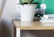 plants in borcas