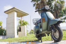 "Vespa Piaggio PK 50 / Vespa Piaggio PK 50 - Wrapping Moto ""Verde Pino Metallizato Opaco"""