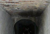 Home - Basement & Cellar & Mans Cave