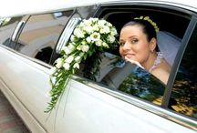 Limousine / We offer the best shuttle limousine for your wedding in Miami, for us is very important and timely treatment. Renting a limo at your wedding will be an unforgettable experience.