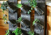 Vertical herbs garden