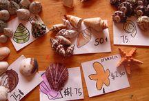 Kosmische educatie / Alles rondom Kosmische educatie (kosmisch onderwijs - KOO) in Montessori-onderwijs.