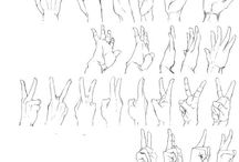 Hands/Finger