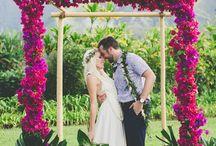 • wedding • (hawaii)