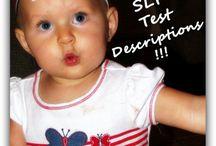 SLT test discriptions