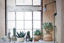 Planten woning