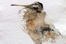 Vögel - Kunst & Art