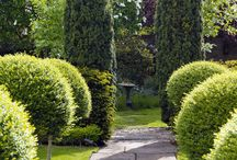 gardens for stables