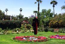Im Anima Garden bei Marrakesch / Der Anima Garden in der Nähe von Marrakesch ist ein wahrer Traumgarten und unbedingt einen Besuch wert.  Gern planen wir den Besuch in Ihre Marokkoreise ein.