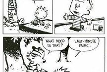 Now That's Calvin & Hobbes