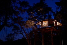 Love Cabins / Cabins in the blue mountains above Sydney
