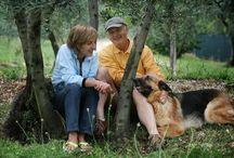 Az. Agricola Il Campo