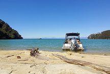 Mein Leben in Neuseeland