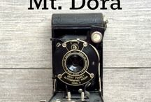 #365MtDora / Project 365 of Mt. Dora Florida. A photo a day journal sharing all the amazing sights in the area using my iPhone6