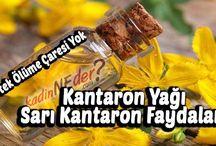 Kantaron Yağı – Sarı Kantaron Faydaları / Kantaron Yağının Faydaları Kantaron yağı deri hastalıkları ve yara tedavileri başta olmak üzere pek çok rahatsızlığın tedavisinde kullanılabilmektedir. Özellikle enfeksiyon rahatsızlıklarının ve mikrop kırılmalarının tedavisinde ciddi anlamda fayda sağlamaktadır. Kantaron yağı kesikler ve açık yaralar üzerinde dahi kullanılabilmektedir.