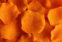 Naranja (cálido & simple): amigable, auténtico, comunicativo, relajado, inclusivo, integrador