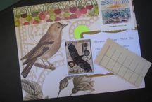 Artsy Mail / by Sherry Rudegeair Morales