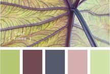 Χρωματικοι συνδυασμοι σαλονι