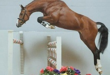 jumping horses / by Loreigh Riney