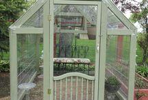 My beautiful greenhouse