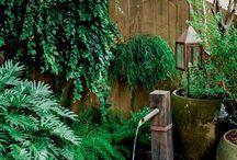 jardins!