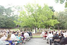 Gingko Tree / Ceremonies at the Gingko Tree