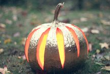 Fall Harvest Deco / by Sara Reed